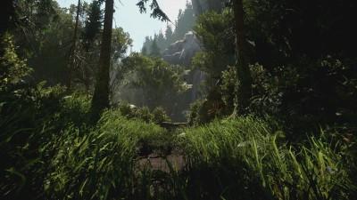 Dans les bois de Sherwood