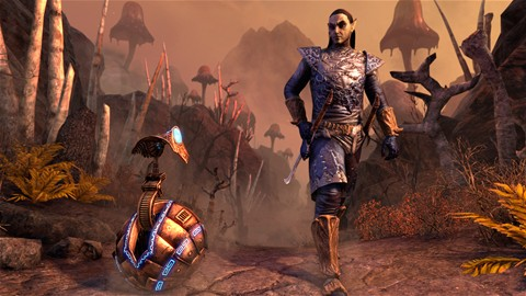 Sauveur de Morrowind