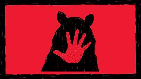 Un ours peut en cacher un autre
