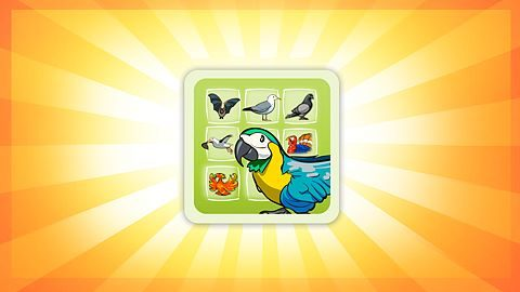 Bird-fancier